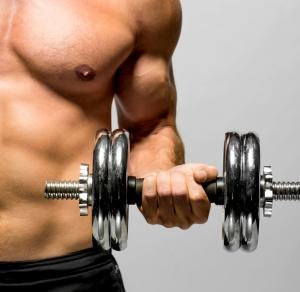 Carnitin verbessert Regeneration